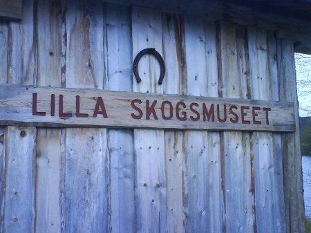 13 lilla skogsmuseet