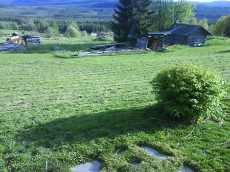 27 klippt gräsmattan