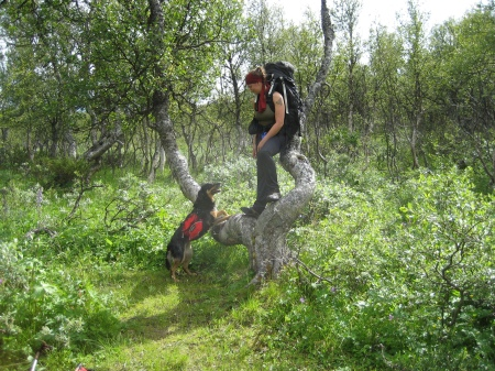 03 jag nicki och trädet