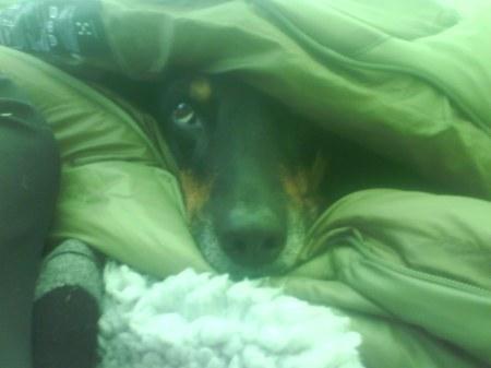 03 nicki i sovsäcken
